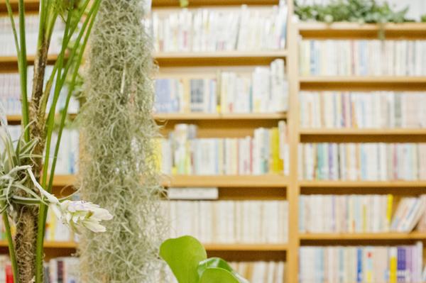 緑の本棚13